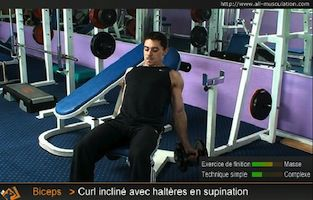 Biceps curl incline avec halteres supination