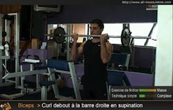 Biceps curl barre supination